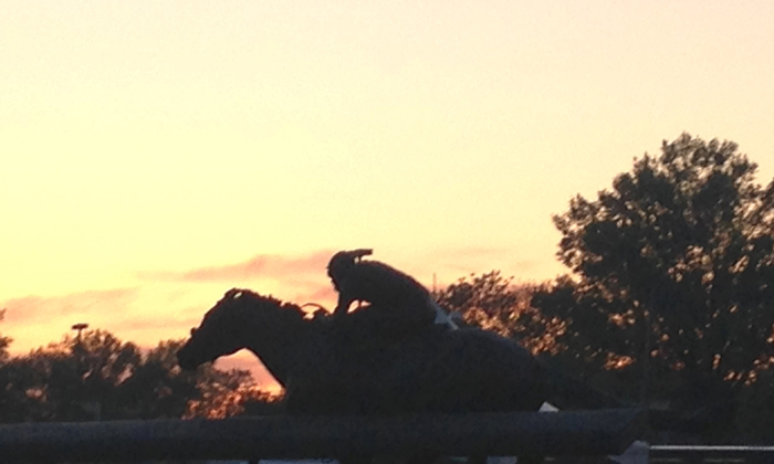 Dusk at Churchill Downs: The final resting place of Barbaro, the horse that won the 132nd Kentucky Derby and was euthanized shortly thereafter.