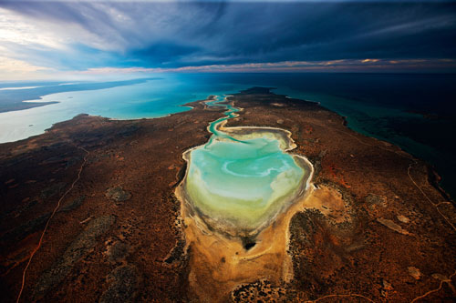 Shark Bay (Planet Ocean movie) (C) Yann Arthus-Bertrand
