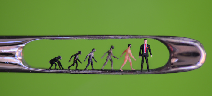 Willard Wigan, Evolution