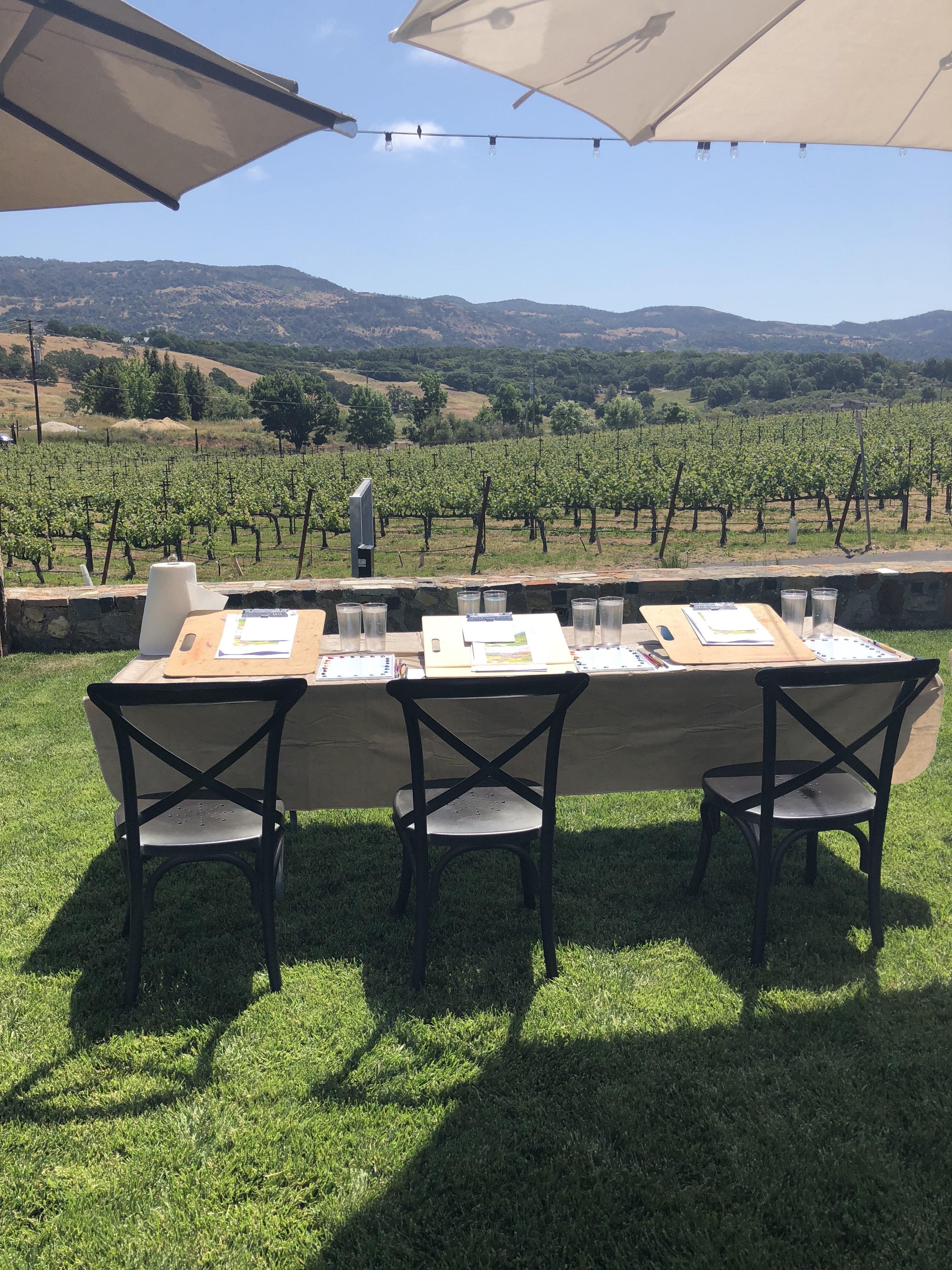 Getting ready to paint the vineyards