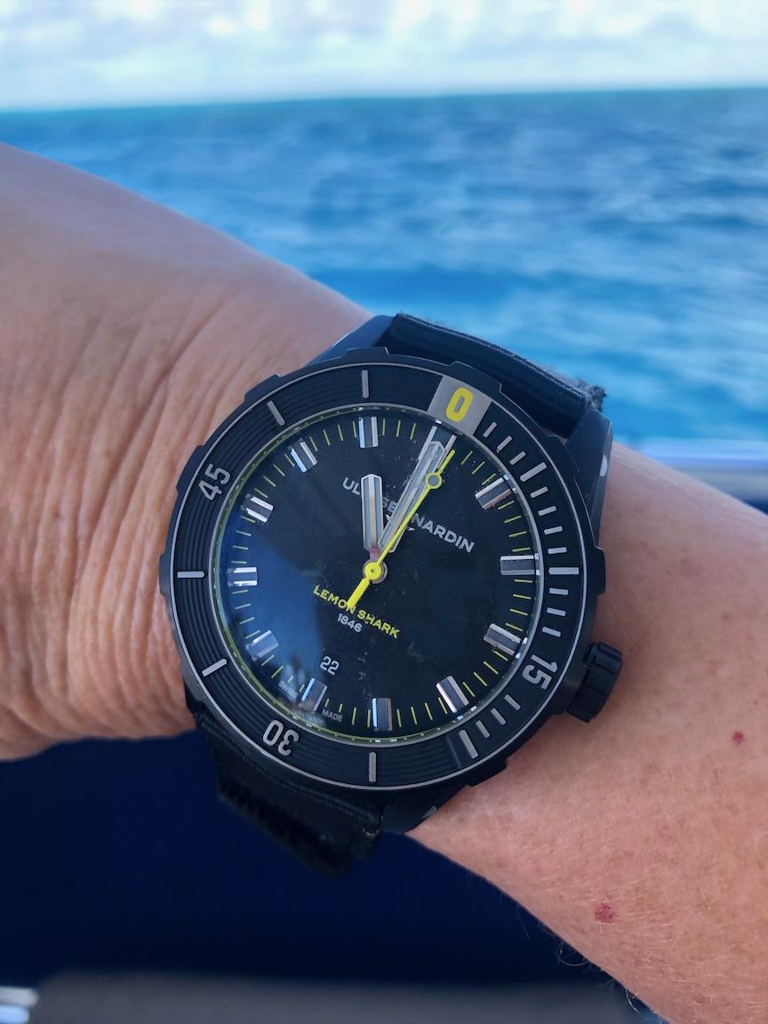 Ulysse Nardin Diver Lemon Shark