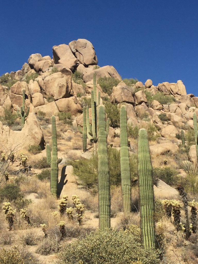 Hiking Pinnacle Peak in Arizona's Sonoran desert