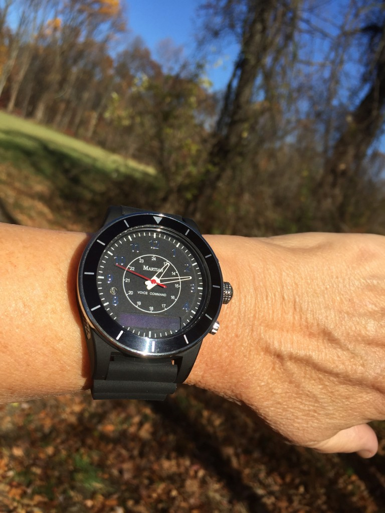 Martian Voice Command Smart Watch (Photo: R. Naas)