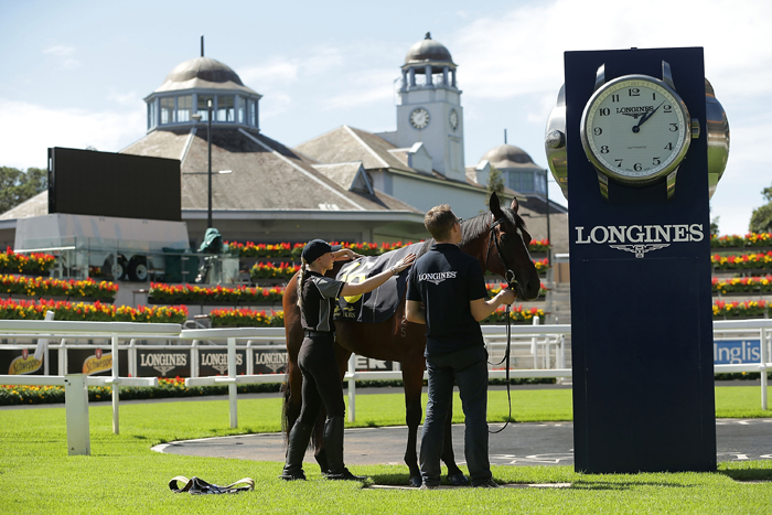Longines Positioning System transceiver is attached to the saddle cloth