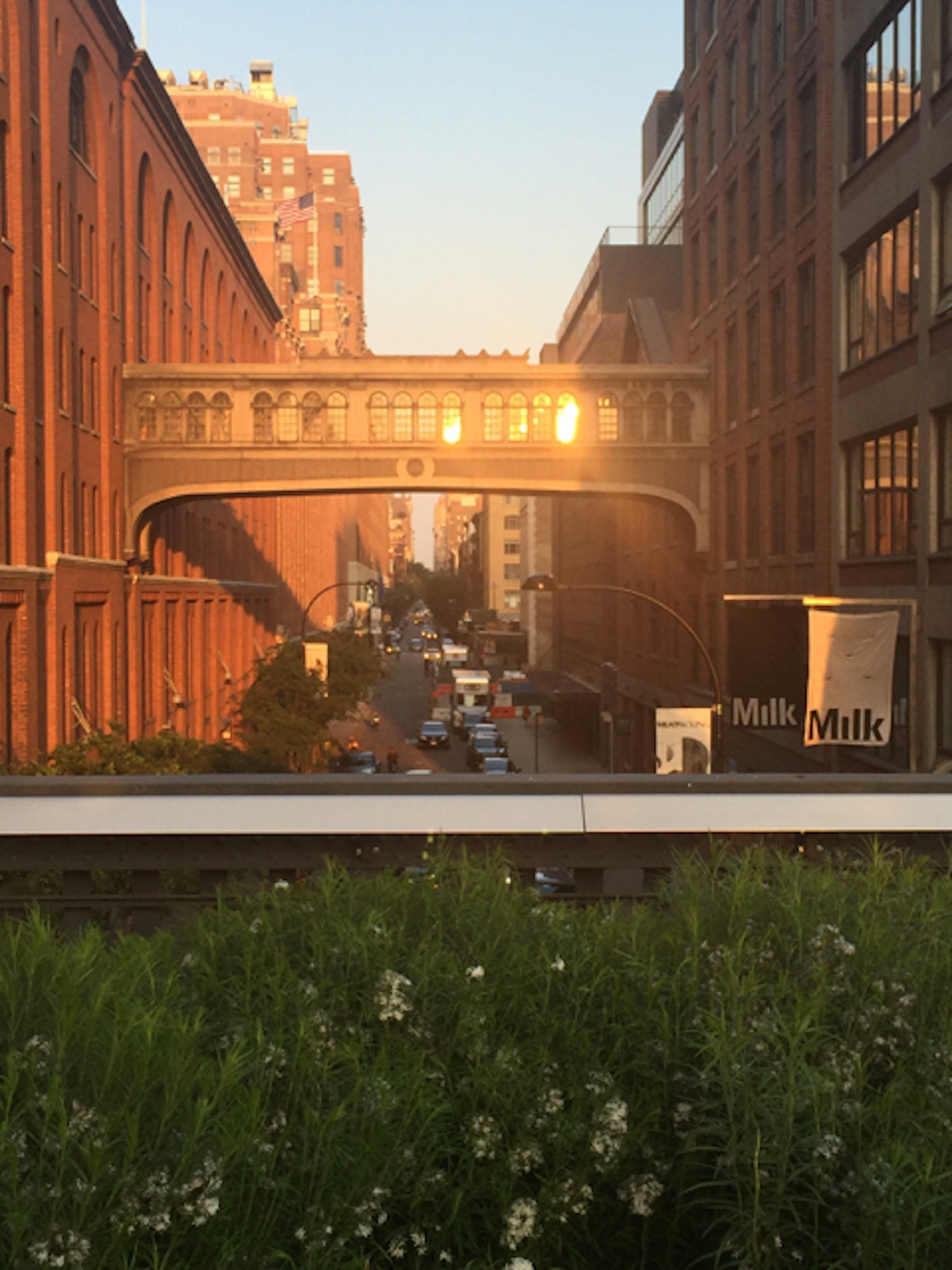 wrapping-up-the-overseas-tour-event-from-the-highline-in-new-york