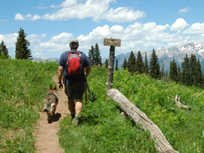 man-and-dog-hiking